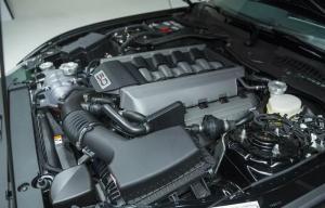 2020 Ford Falcon Engine,